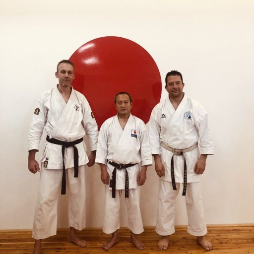 Seiwakai Seminar London - Karate Moerdijk